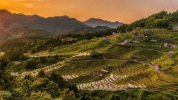 La PATA France et l'institut TCI Research délivrent un message optimiste aux acteurs touristiques de la zone Asie-Pacifique en analysant les intentions de voyages des Français et l'image des destinations de la zone Asie-Pacifique